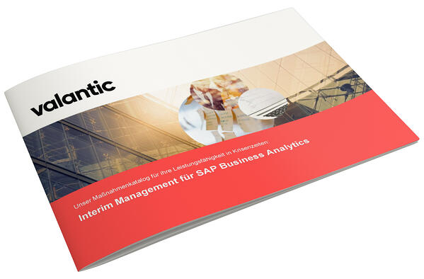 Mockup-Interimsmanagement-SAP-BA