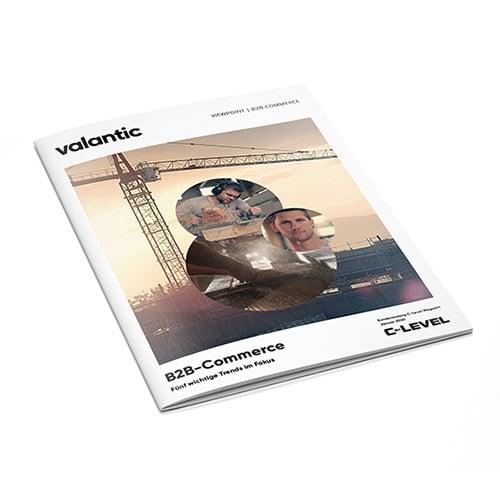 20200304-Whitepaper_B2B-Commerce_Mockup_500x500