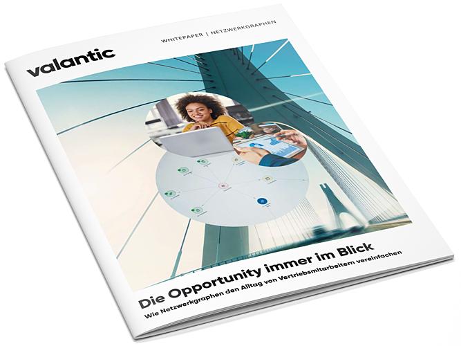 Whitepaper Opportunity_Netzwerkgraphen_Mockup